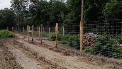 Kerítés gímszarvasoknak 600m